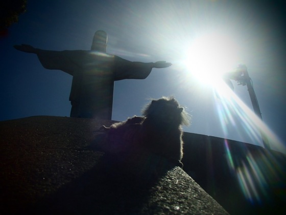Cristo et sagoin